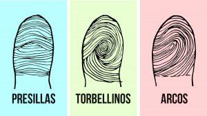 tres tipos diferentes de huellas dactilares