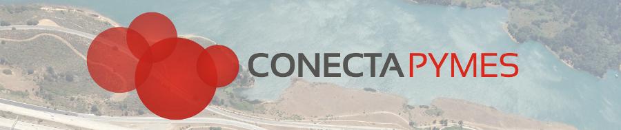 Vista aérea conecta pymes